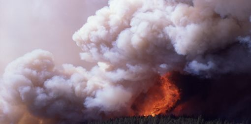 Mirror Plateau in flames, Summer 1988. Source: NPS Photo archives.