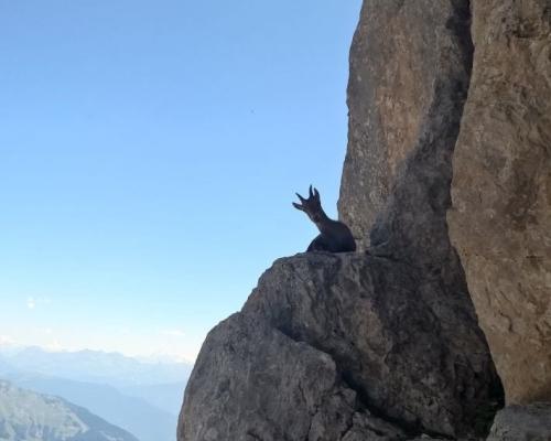 happy-women-in-the-mountains-femmes-montagne-randonnée-ski-skieuse-raquette-balade-informations-guide-essais-chamois