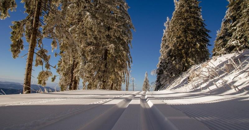 Ski nordique à prix modique