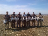 Guided Spring Snow Goose Hunts - Mound City,Missouri - 402-304-1192