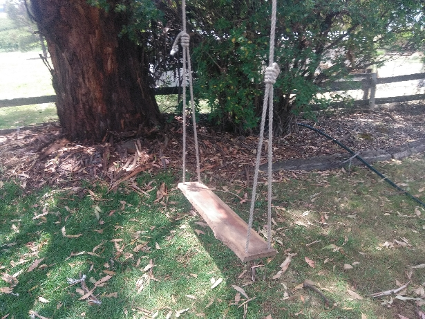 tree swing snowgums