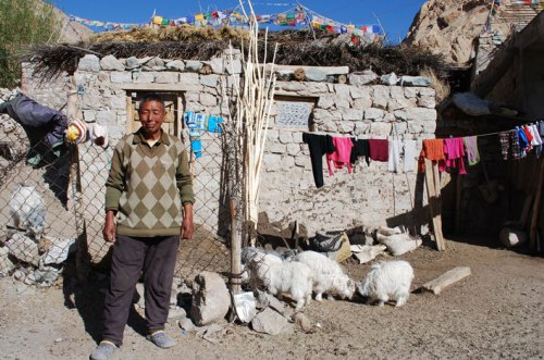 A livestock owner in Ladakh, India, who partnered with our local team to build a predator-proof corral.