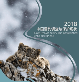 Status of snow leopards in China Report