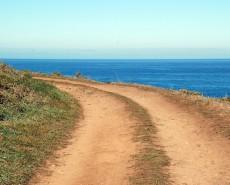 ocean-path-copy-230×185
