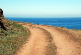 ocean-path-copy-320×220