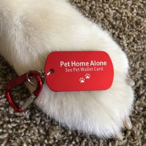 pet home alone tag for RV