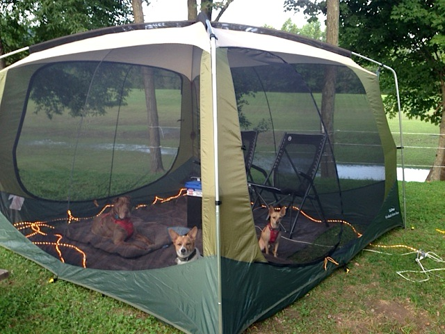 LLBean screened room tent