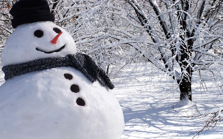 Резултат с изображение за snowman real