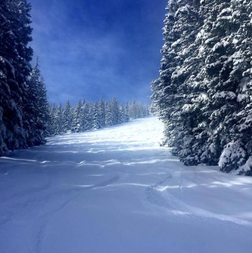 First tracks on Aspen's Ajax Mountain. Sigh.