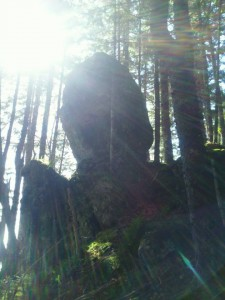 A boulder perched precariously on a ridge in the Fundy Foot Path