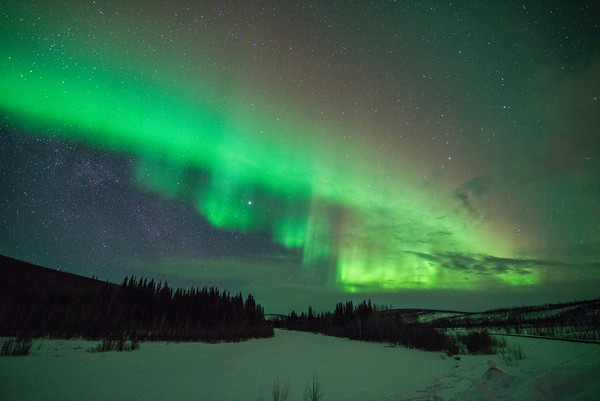 The Northern Lights viewed from Denali - photo by Sherman Hogue