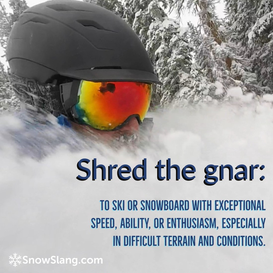 Shred the gnar meaning new square