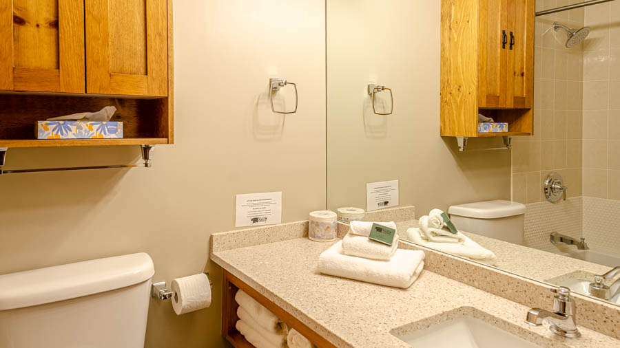 Cahility Hotel & Suites, Sun Peaks, 1 bed condo