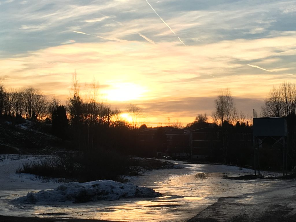 Sunset in Finland with ice and trees. Turku, Southwest Finland