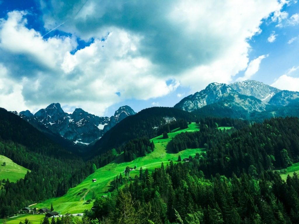 holiday-on-the-farm-in-switzerland