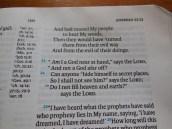 tbs and nkjv study bible 046