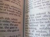 three bibles 043
