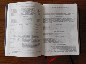 three bibles 091