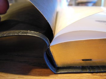 Passio MEV Bible 014