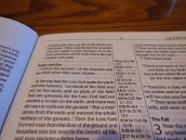 Passio MEV Bible 026