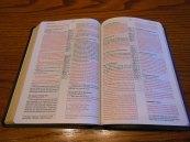 Passio MEV Bible 030