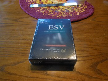 Cambridge ESV Clarion and REB 041
