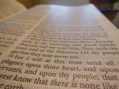 tbs windsor text Bible 033