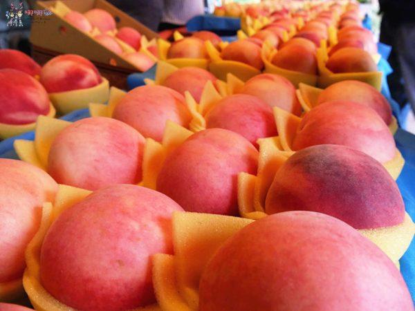 桃園美食,桃園旅遊,親子旅遊,拉拉山,水蜜桃,白桃冰,拉拉山巨木群
