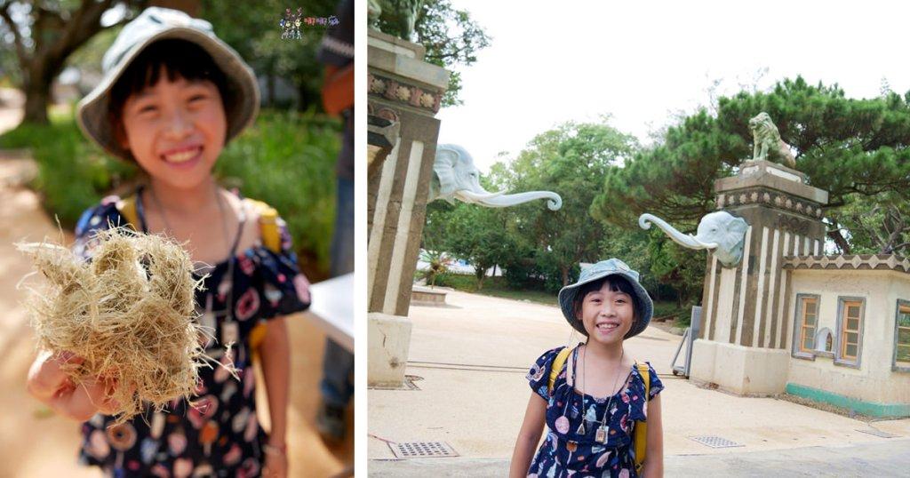 新竹動物園,封園,改造,河馬樂樂,大象,動物園,溜小孩