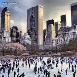 Central Park, Winter, New York, NY