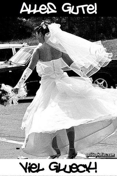 Hochzeit - Heirat - Trauung: