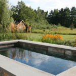 Two Pools In One A Plunge Pool Does Double Duty Soake Pools