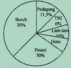 Diagram lingkaran pekerjaan penduduk desa