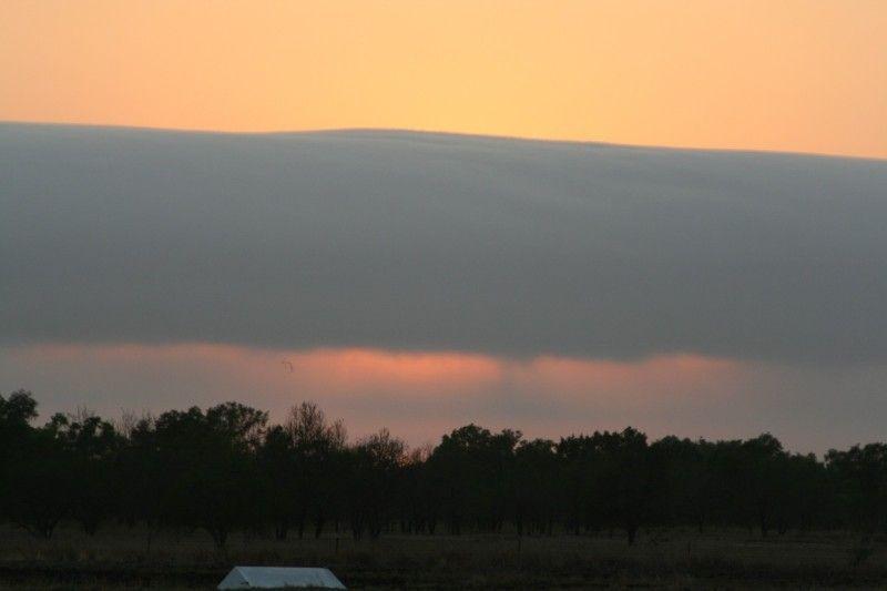 photo 12 - birds under the cloud