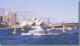 Albatross_promotion in Sydney