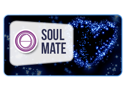ThetaHealing Practitioner Course: Soul Mate