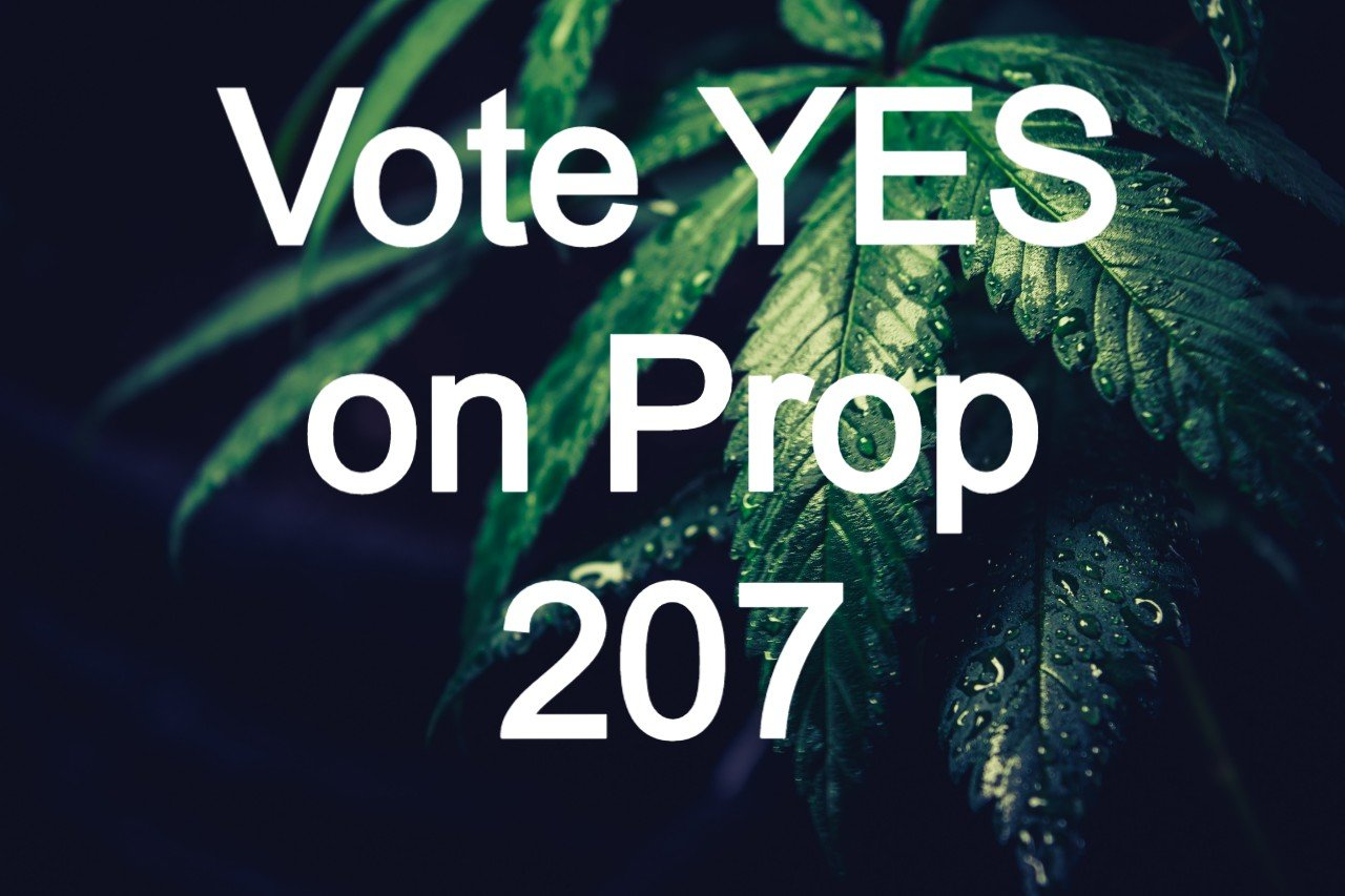 image to attract people to vote yes on Prop 207