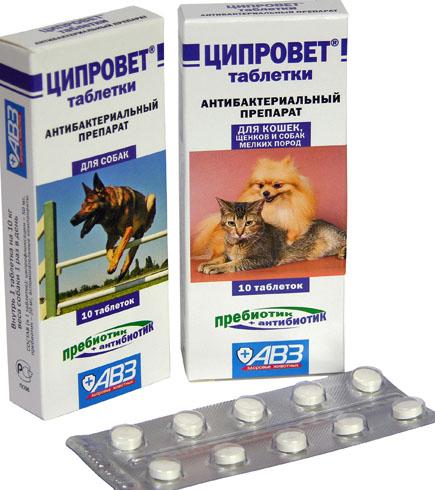 mint tabletta prosztatitis)