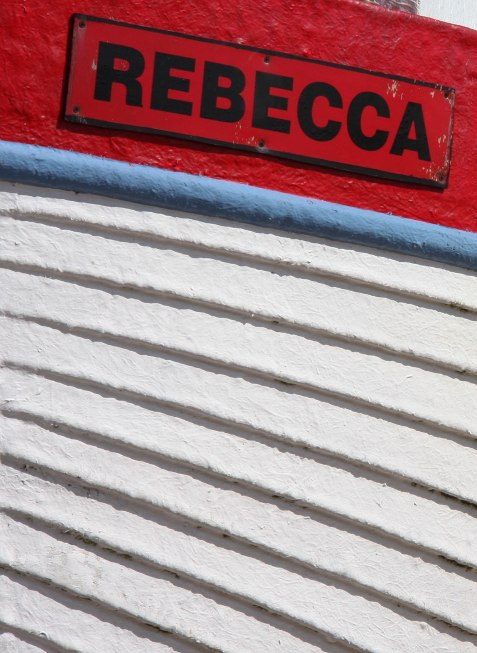 Fan-like lines on 'Rebecca'. Copyright Fiona Michie.