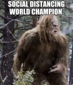 Sasquatch = social distancing champion