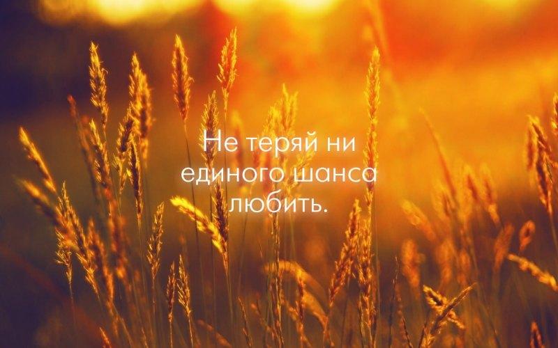 Не теряй ни единого шанса любить