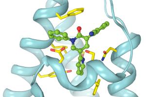 Perampanel bound to AMPA receptor