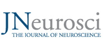 JNeurosci The Journal of Neuroscience logo