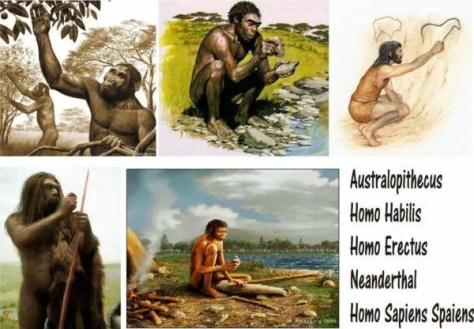 homo-sapiens-hominidos