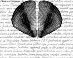 ¿Tiene Dios su centro en el cerebro?