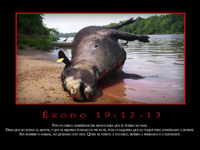 Éxodo 19:12-13
