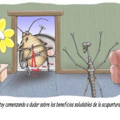 La acupuntura no es para todos