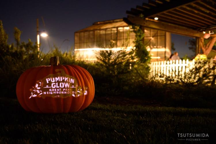 Pumpkin Glow Graphic