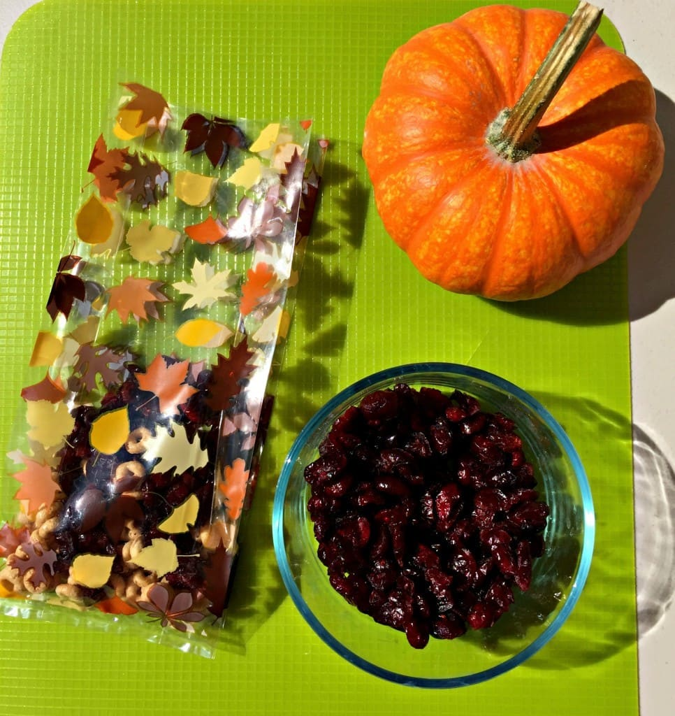 Harvest Trail Mix For Fall Sports Teams