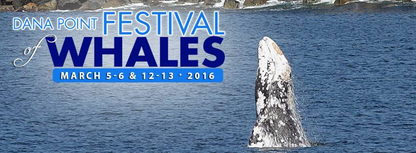 5 Ways to Enjoy Dana Point's Festival of Whales